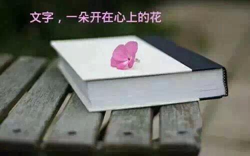 【笔尖】写文字的男女(诗歌)